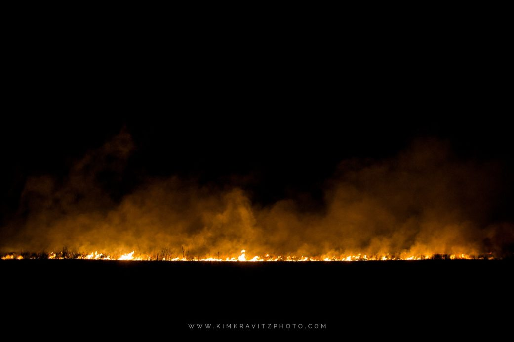 controlled burn of a field in girard kansas kim kravitz