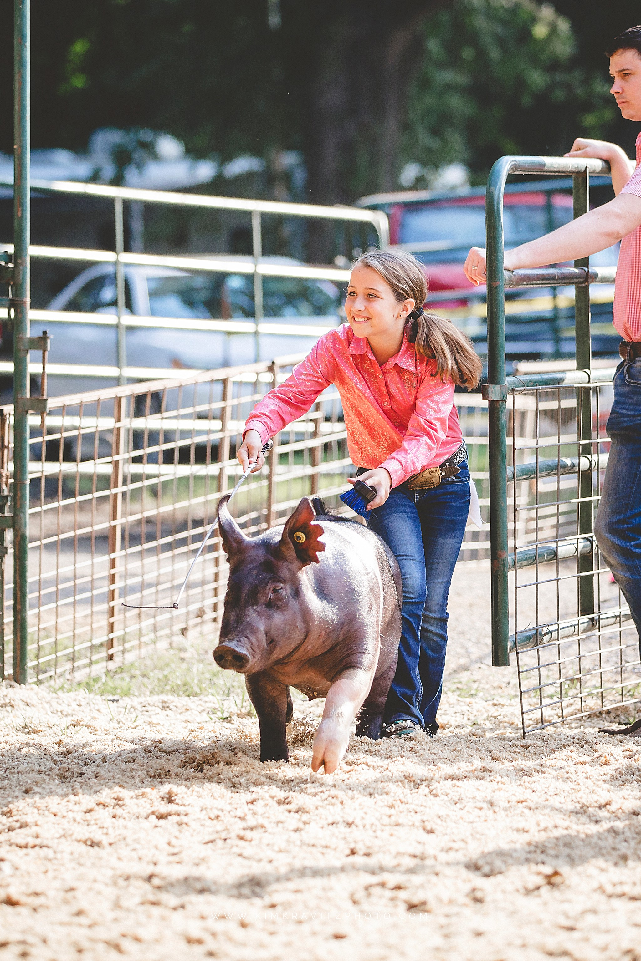 girl showing pig at crawford county fair
